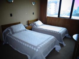 安图皮仁酒店