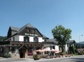 Hotel Lesní dům, 扬斯凯拉兹涅