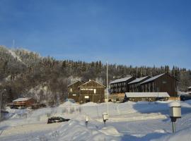 福纳斯滑雪公寓&滑雪村, Funäsdalen