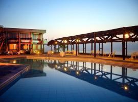 阿里卡泛美酒店
