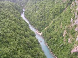 塔拉欧拉萨克乡村民宿, Ðurđevića Tara