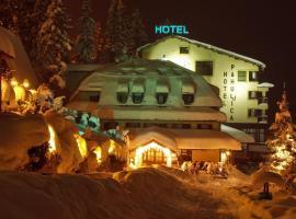 帕湖里加酒店, Vlasic