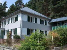 Apartments Michovka