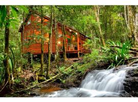 热带雨林酒店