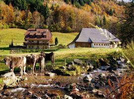 Gasthaus zur Linde-Napf