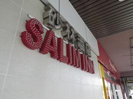 萨利姆酒店