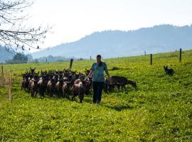 Agroturistika kozí farma Rožnov pod Radhoštěm