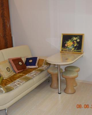 Mini-hotel OMNItur
