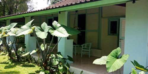 巴厘岛露营