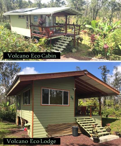 雨林生态度假屋