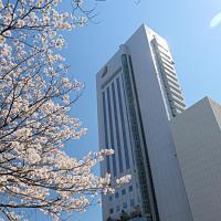 高知旭皇家日航酒店,位于高知的酒店