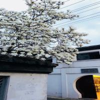 苏州苏憩民宿(平江路店)