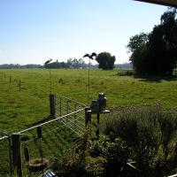 Willowbank Farm Cottage