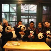 成都熊猫夫人青年旅舍