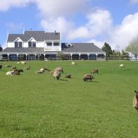 乡村家园黑羊农场住宿加早餐旅馆