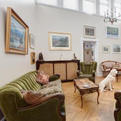 宠物友好酒店  3家允许携带宠物的酒店位于霍尔斯沃德吕尔