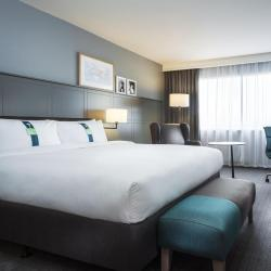 假日酒店  10家假日酒店位于纽约
