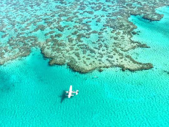 梦幻珊瑚海+雨林大冒险,玩不够的澳大利亚凯恩斯